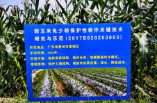 农科专家送技术 助推产业再发展