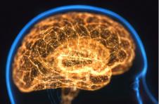 """盲人可以""""看到""""科学家用电在大脑上绘制的信"""
